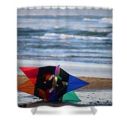 Grounded Rainbow Shower Curtain