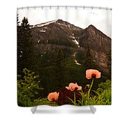Grounds At Lake Louise Shower Curtain