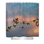 Group Flight Shower Curtain
