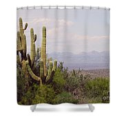 Group Hug Scene Shower Curtain
