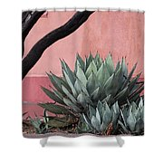 Group Of Cacti Shower Curtain