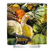 Group Of Gourds Expressionist Effect Shower Curtain