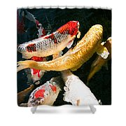Group Of Koi Fish Shower Curtain