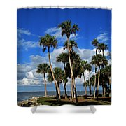 Group Of Palms Shower Curtain
