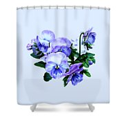 Group Of Purple Pansies And Leaves Shower Curtain