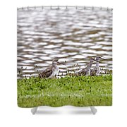 Group Shot Shower Curtain