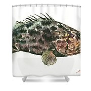 Grouper Fish Shower Curtain