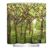 Grove Of Trees Shower Curtain
