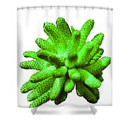 Growing Green Shower Curtain