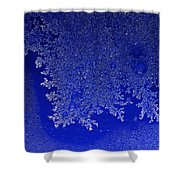 Growing Insight Shower Curtain