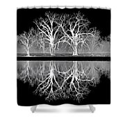 Growing Old Together - The Negative Shower Curtain