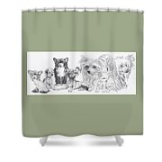 Growing Up Chinese Crested And Powderpuff Shower Curtain by Barbara Keith