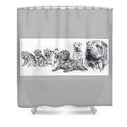 Growing Up Chinese Shar-pei Shower Curtain