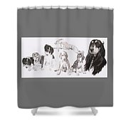 Growing Up Saluki Shower Curtain