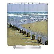 Groyne And Gulls - Bridlington Shower Curtain