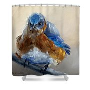 Grumpy Bird Shower Curtain
