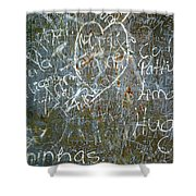 Grunge Background IIi Shower Curtain