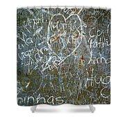 Grunge Background IIi Shower Curtain