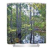Guana Marsh Shower Curtain
