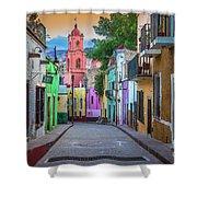 Guanajuato Backstreet Shower Curtain