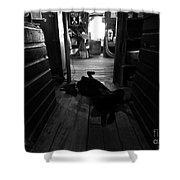 Guard Dog Shower Curtain by David Lee Thompson