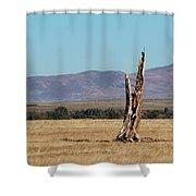 Guardare Fuori Shower Curtain