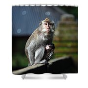 Guardian Mother 2 Shower Curtain
