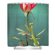 Guardian Of The Rose Shower Curtain