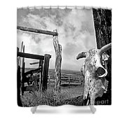 Guardian Spirit  Shower Curtain