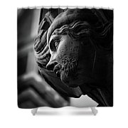 Guarding St. Mark's Tower Shower Curtain