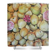 Guavas - Chapala Shower Curtain