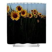 Guide Me Shower Curtain