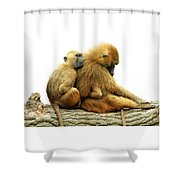 Guinea Baboons Shower Curtain