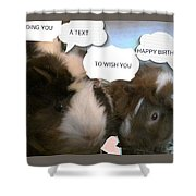 Guinea Pig Love And Bday Wishes Shower Curtain