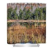 Guinea Pond - Sandwich New Hampshire Usa Shower Curtain