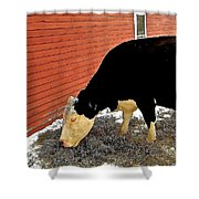 Guinevere Grazing Shower Curtain