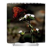 Gulf Fritillary Butterfly Too Shower Curtain