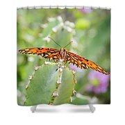 Gulf Fritillary On Cactus  Shower Curtain