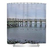 Gulf Pier Shower Curtain