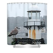 Gull And Lighthouse Shower Curtain
