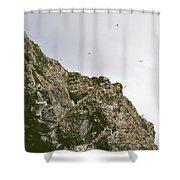 Gull Island Shower Curtain