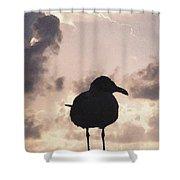 Gullhouette Shower Curtain
