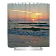 Gulls On The Gulf At Sunset Shower Curtain
