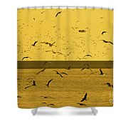 Gulls Orange Tint Shower Curtain