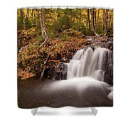 Gully Lake Cascades #1 Shower Curtain
