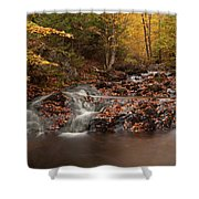 Gully Lake Trail Cascades #2 Shower Curtain