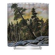 Gunflint Winter Shower Curtain