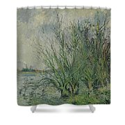 Gustave Loiseau 1865 - 1935 Willows, Edges Oise Or On The Banks Of The Oise Shower Curtain