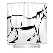 Gv095 Shower Curtain