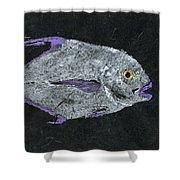 Gyotaku African Pompano Shower Curtain